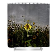 Goth Sunflower Shower Curtain