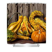 Gourds Against Wooden Wall Shower Curtain