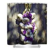 Gourmet Bouquet I Shower Curtain