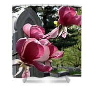 Graceful Abundance Shower Curtain