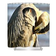 Graceful Contemplation Shower Curtain