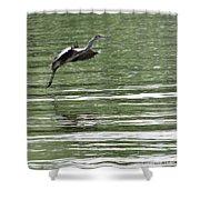 Graceful Landing Shower Curtain