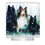 Gracie Abbey And Bella Shower Curtain