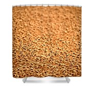 grain crop ripening in Saskatchewan Shower Curtain