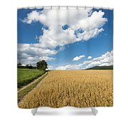 Grainfield Blue Sky Shower Curtain
