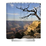 Grand Canyon 4 Shower Curtain
