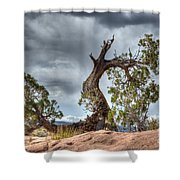 Grand Canyon Facing The Storm Shower Curtain