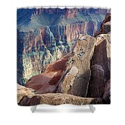 Grand Canyon Roxie Roller Shower Curtain