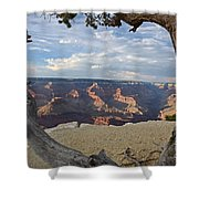 Grand Canyon Tree Shower Curtain