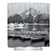Grand Teton Dawn Iv Shower Curtain