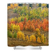 Grand Teton Fall Color Shower Curtain