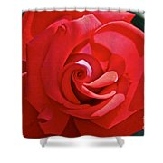 Grande Amore Shower Curtain