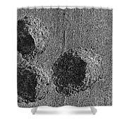 Granite Holes Shower Curtain