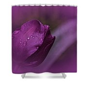 Grape Tulip Shower Curtain