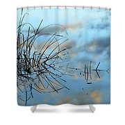Graphics In Nature Shower Curtain