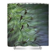 Grass Abstraction Shower Curtain
