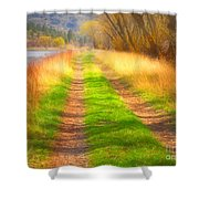 Grass And Shadows Shower Curtain