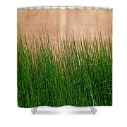 Grass And Stucco Shower Curtain