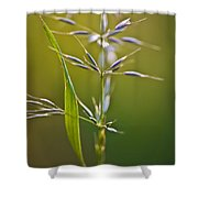 Grass In Flower Shower Curtain