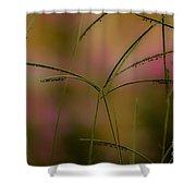 Grass Seeds Shower Curtain