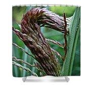 Grass Worm Shower Curtain
