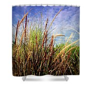 Grasses Standing Tall Shower Curtain