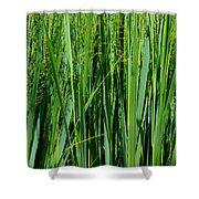 Grassland Shower Curtain