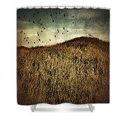 Grassy Hill Birds In Flight Shower Curtain