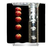 Gravity Comparison Shower Curtain