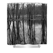 Gray Day Reflections Shower Curtain