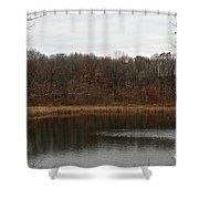 Gray Lake Shower Curtain