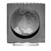 Gray Shower Curtain by Susan Herber