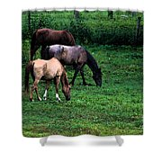Grazing - Watercolor Shower Curtain
