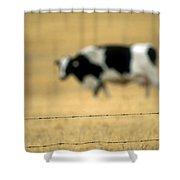 Grazing Cow, Alberta, Canada Shower Curtain