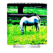 Grazing Horse Shower Curtain by Bill Cannon