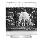 Grazing In Black And White Shower Curtain
