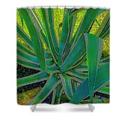 Great Agave Shower Curtain
