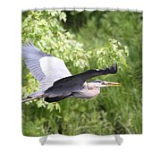 Great Blue Flight Shower Curtain