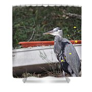 Great Blue Heron - Chicken Of The Sea Shower Curtain