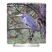 Great Blue Heron - Happy Place Shower Curtain