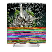 Great Blue Heron Ardea Herodias Nesting Shower Curtain