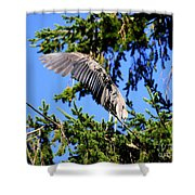 Great Blue Heron Cover Up Shower Curtain