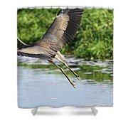 Great Blue Heron Escape Shower Curtain