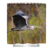 Great Blue Heron In Flight II Shower Curtain