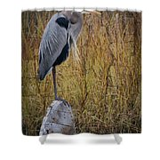 Great Blue Heron On Spool Shower Curtain by Debra and Dave Vanderlaan
