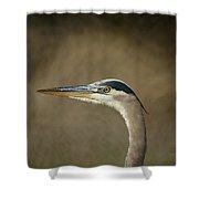Great Blue Heron Profile Shower Curtain