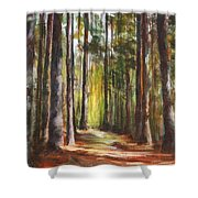 Great Brook Farm Summer Path Shower Curtain