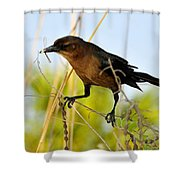 Great Catch Shower Curtain