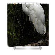 Great Egret 3 Shower Curtain