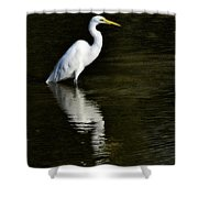 Great Egret Reflection  Shower Curtain